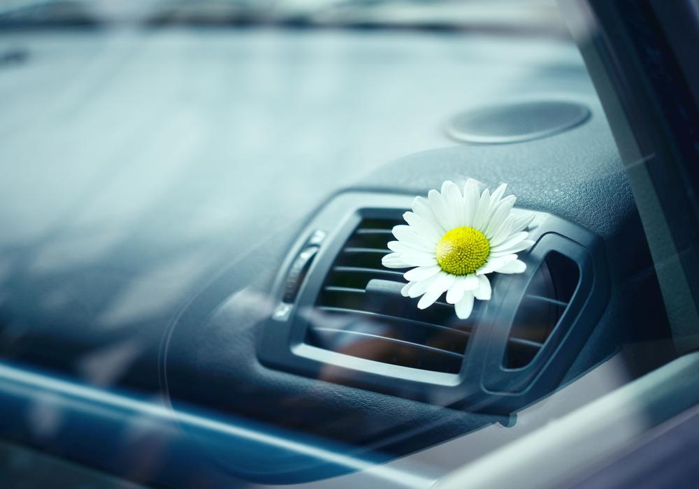 aria condizionata in auto