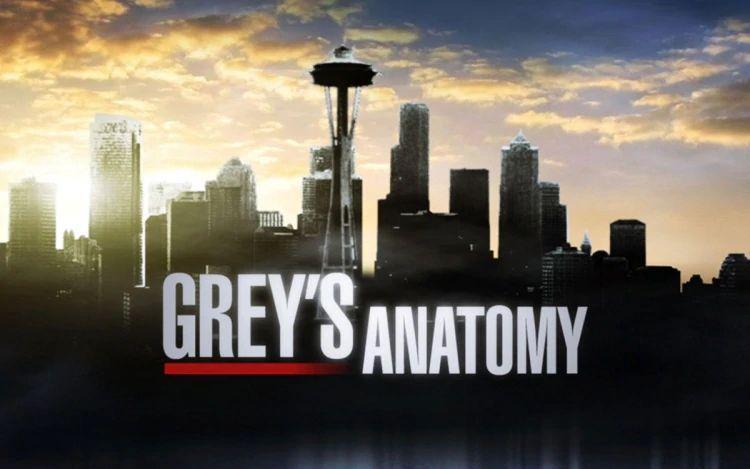 Grey's Anatomy 16: trama episodio 18