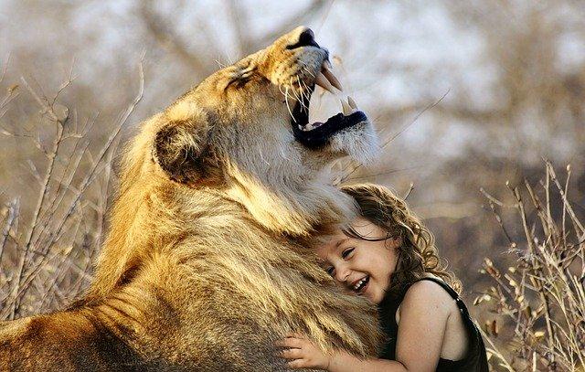 Giornata mondiale degli animali, frasi e immagini
