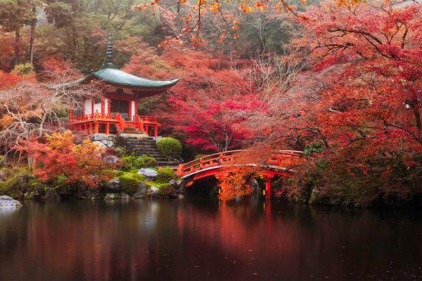 Il Giappone: appunti, tesine e risorse utili per lo studio