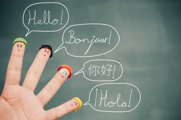 orientamento terza media liceo linguistico