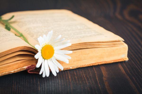 Giovanni Pascoli: biografia, pensiero e opere