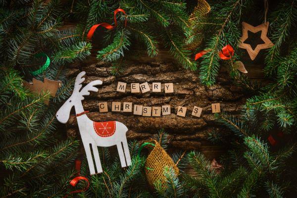 Decorazioni Natalizie In Inglese.Tema Sul Natale In Inglese Studentville